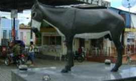 Itabi - Simbolo da cidade, Por silvania